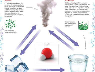 Infographic: States of Matter